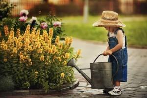 Wir beseitigen Gerüche und reinigen 100% biologisch!